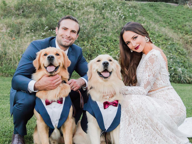 Dog Outfits & More for the Fur-fect Wedding of the Humans