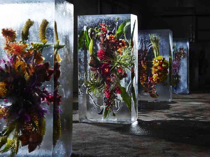 All The Reasons Why You Need To Have Ice Sculptures As A Part Of Your Wedding Decor