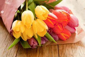 Genny's Fresh Flowers