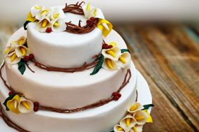 Shelly Arora Cakes