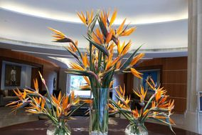 Floral Art By Sunil