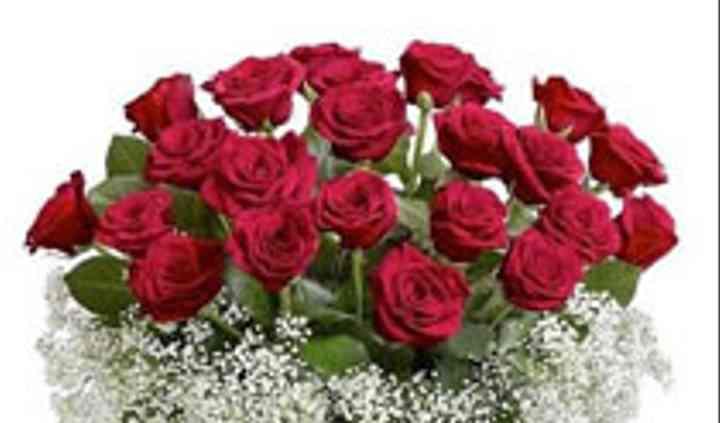Flowers n Fruits