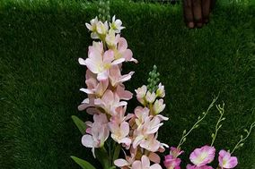 Banzer Blossoms And Creens