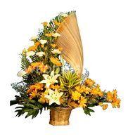 Orchid´s florist