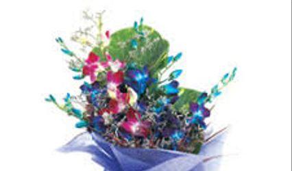 Rajdhani Florist