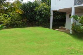 Anitha Garden