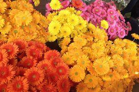 Deccan Flowers Bangalore
