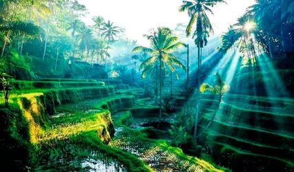 Kesari, Indore