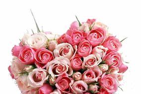 Here Flower