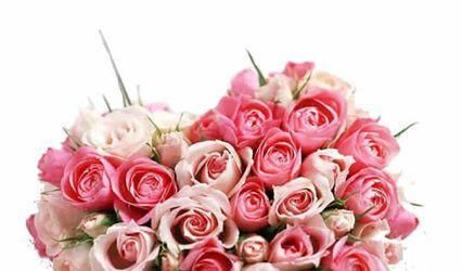 Here Flower, Laxmi Nagar