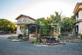 Gir Lions Paw Resort