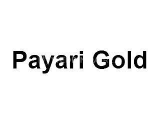 Payari Gold Logo