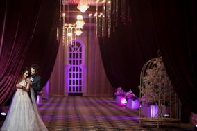 Focus Wedding Photographers