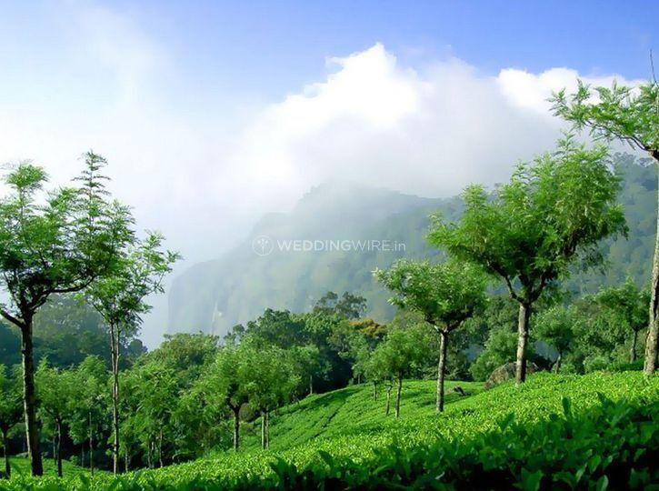 Sri Balaji Tour & Travels