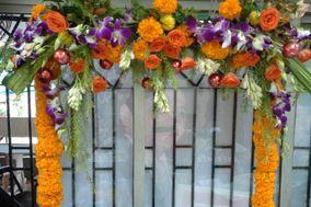 Institute of Floral Design