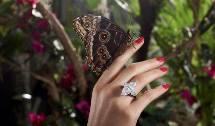 Acira Diamonds & Jewels 1