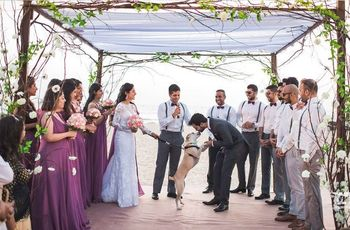 A Destination Wedding in Goa - How To Plan It And At What Cost