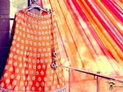 The wedding of Aparna and Harsh 2