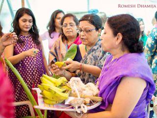 The wedding of Amrita and Bhisham 3