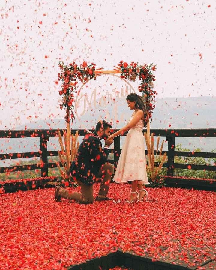 This Rosy Proposal Looks So Beautiful!! 🤩 - 1
