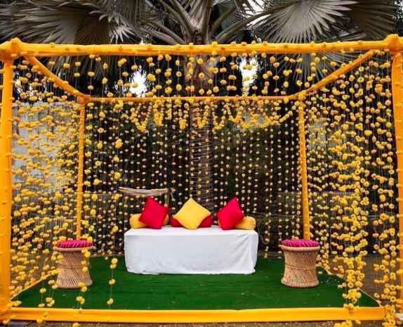 Marigold Setup! - 1